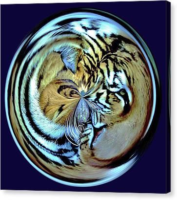 Tiger Orb Canvas Print by Paulette Thomas