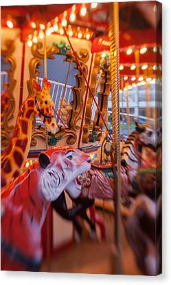 Tigers And Giraffes Oh My Canvas Print by Scott Campbell