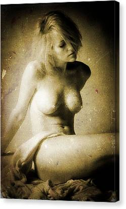 Timeless Form Of Beauty Canvas Print by Timothy Bischoff