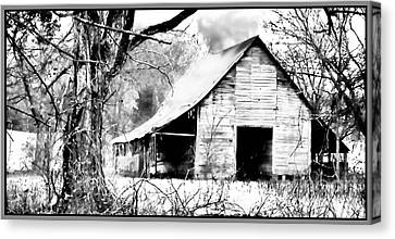 Timeless In Black And White Canvas Print by Betty LaRue