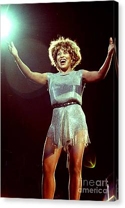Tina Turner - 0458 Canvas Print by Gary Gingrich Galleries
