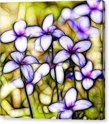 Tiny Bluet Wildflower Batik Canvas Print by Kathy Clark