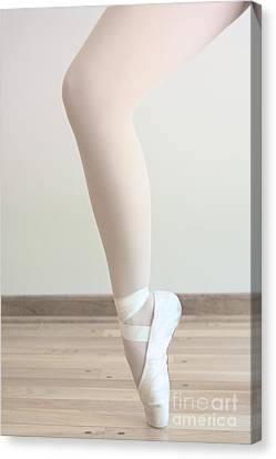 Tip Toe Canvas Print by Margie Hurwich