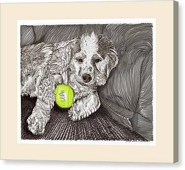 Tired Puppy Canvas Print by Jack Pumphrey