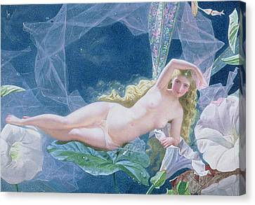 Titania Lying On A Leaf  Canvas Print by John Simmons