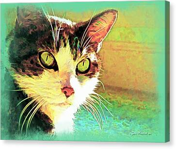 Tj In The Sun Canvas Print by Joan  Minchak