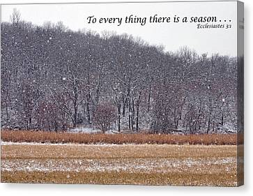 To Every Thing There Is A Season Canvas Print by Nikolyn McDonald