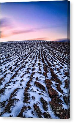 To Infinity Canvas Print by John Farnan