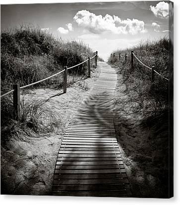 To The Beach Canvas Print by Dave Bowman