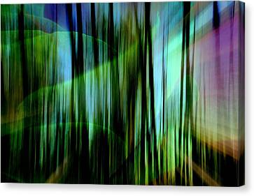 To The Future Canvas Print by Shirley Sirois
