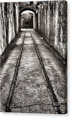 To The Nightmare Canvas Print by Olivier Le Queinec