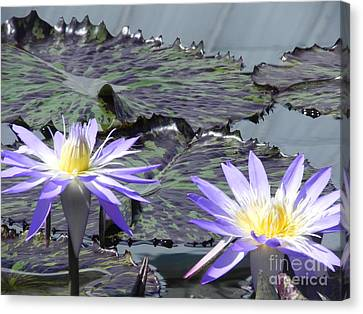Together Is Beauty Canvas Print by Chrisann Ellis