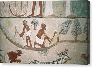 Tomb Of Menna. Egypt. Dayr Al-bahri Canvas Print by Everett