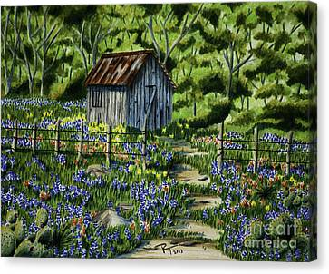 Tool Shed Canvas Print by Robert Thornton