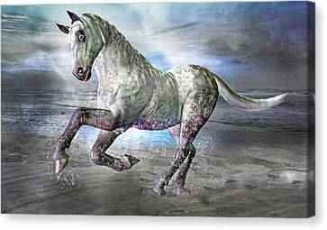 Topsail Gallop Canvas Print by Betsy Knapp