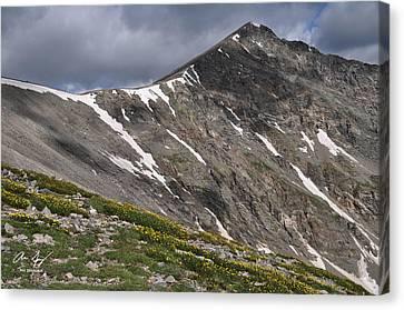 Torreys Peak Canvas Print by Aaron Spong