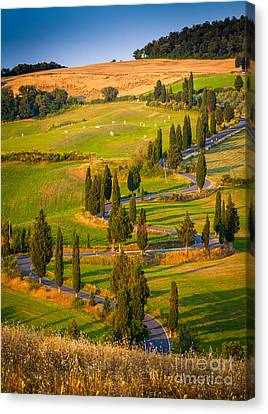 Toscana Strada Canvas Print by Inge Johnsson