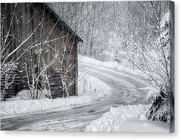 Touched By Snow Canvas Print by Joan Carroll
