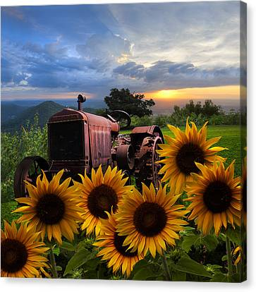 Tractor Heaven Canvas Print by Debra and Dave Vanderlaan