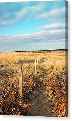 Trail By The Sea Canvas Print by Brooke Ryan