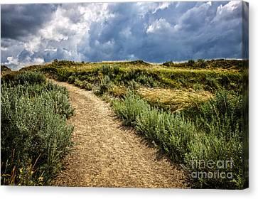 Trail In Badlands In Alberta Canada Canvas Print by Elena Elisseeva