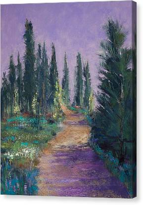 Trail In The Woods Canvas Print by David Patterson