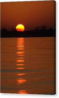Trailing Sun Canvas Print by Karol Livote
