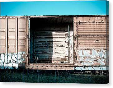 Trains 15 Canvas Print by Niels Nielsen