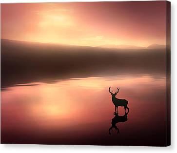 Tranquil Dawn Canvas Print by Jennifer Woodward
