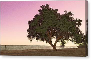 Tranquil Florida Bay Canvas Print by Glenn McCarthy Art and Photography
