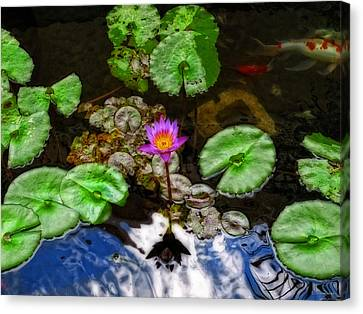 Tranquility - Lotus Flower Koi Pond By Sharon Cummings Canvas Print by Sharon Cummings