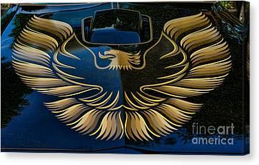 Trans Am Eagle Canvas Print by Paul Ward