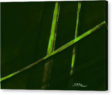 Trapped    Number 3 Canvas Print by Diane Strain