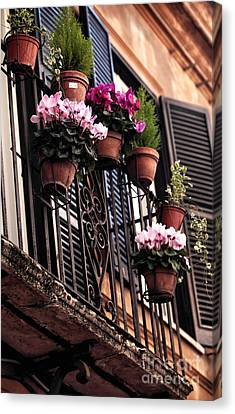 Trastevere Flowers Canvas Print by John Rizzuto