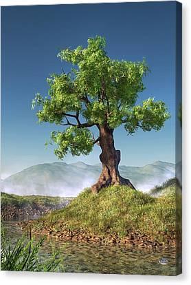 Tree Canvas Print by Daniel Eskridge