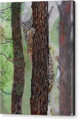 Tree Hugger Canvas Print by Gail Seufferlein