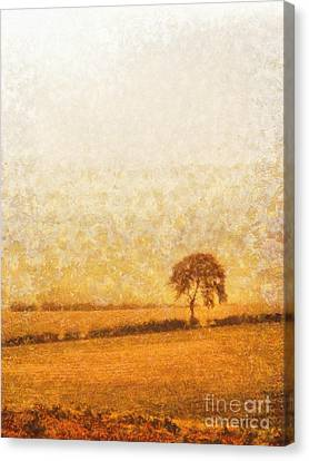 Tree On Hill At Dusk Canvas Print by Pixel  Chimp