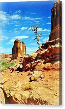 Tree On Park Avenue Canvas Print by Marty Koch