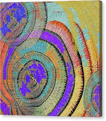 Tree Ring Abstract 3 Canvas Print by Tony Rubino