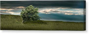 Tree Swaying In Storm Canvas Print by Panoramic Images