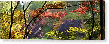 Trees In A Garden Butchart Gardens Canvas Print by Panoramic Images