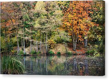 Trees In Autumn Canvas Print by Natalie Kinnear
