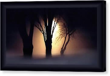 Trees In Midnight Fog Canvas Print by Steve Ohlsen