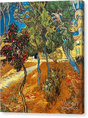 Trees In The Asylum Gardens Canvas Print by Vincent Van Gogh