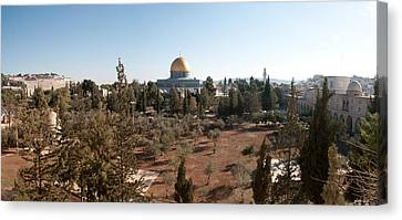 Trees With Mosque In The Background Canvas Print by Panoramic Images