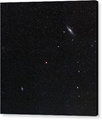 Triangulum And Andromeda Galaxies Canvas Print by Eckhard Slawik
