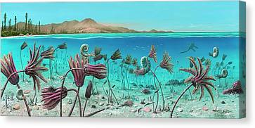 Triassic Land And Marine Life Canvas Print by Richard Bizley