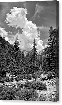 tribute to Ansel Adams Canvas Print by Peggy Hughes
