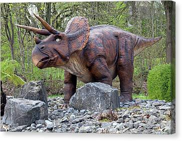 Triceratops Model I Canvas Print by Dirk Wiersma