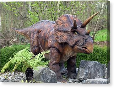 Triceratops Model II Canvas Print by Dirk Wiersma